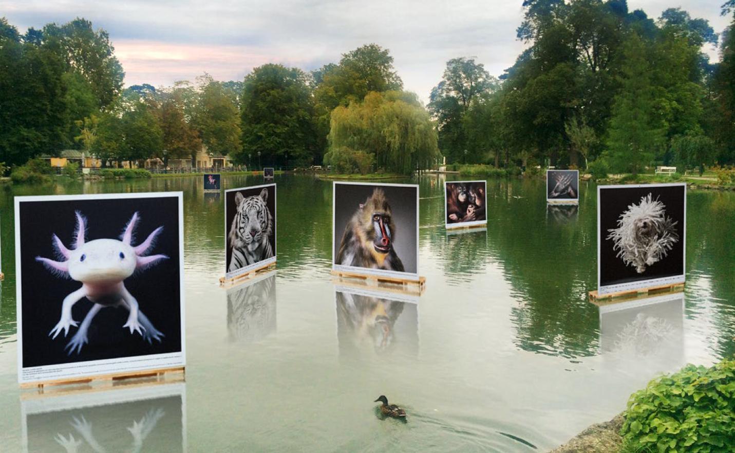 Das Photo Festival <em>La Gacilly</em>